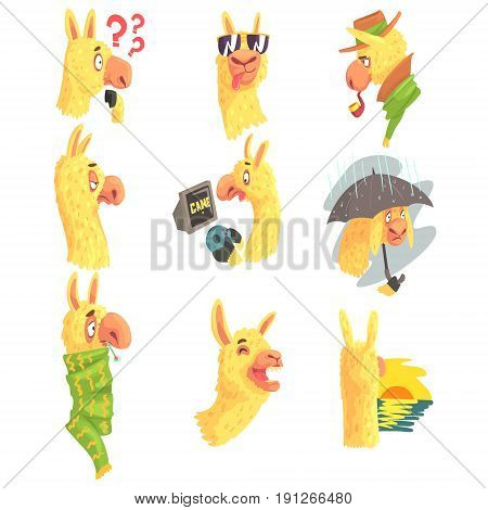 Cute alpaca characters posing in different situations, cartoon alpaca different activities colorful Illustrations isolated on white background