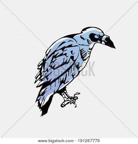 Hand-drawn pencil graphics, bird, raven, crow, rook. Engraving, stencil style. Logo, sign, emblem, symbol. Stamp, seal. Simple illustration. Sketch.