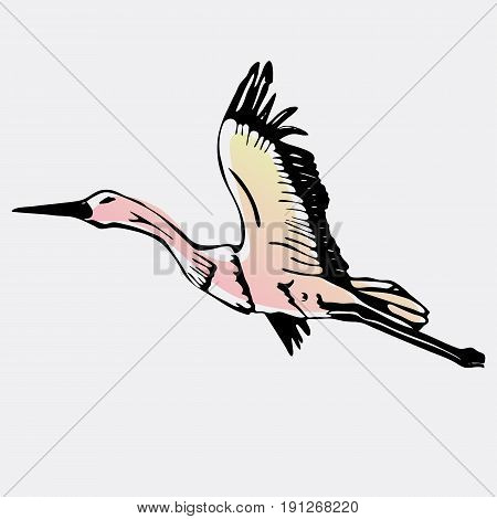 Hand-drawn pencil graphics, stork, swan. Engraving, stencil style. Logo, sign, emblem, symbol. Stamp, seal. Simple illustration. Sketch.