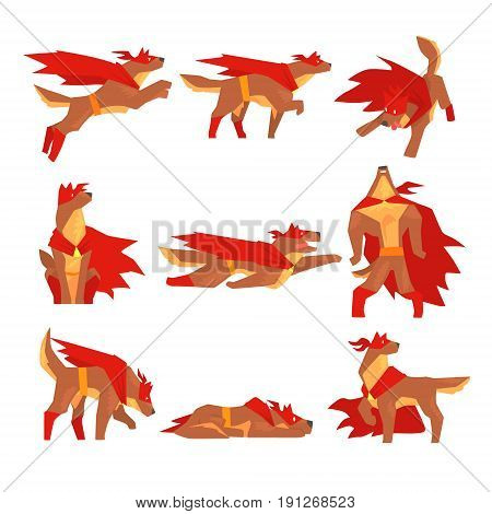 Dog superhero character set, dog in different poses with red cape vector Illustrations isolated on a white background