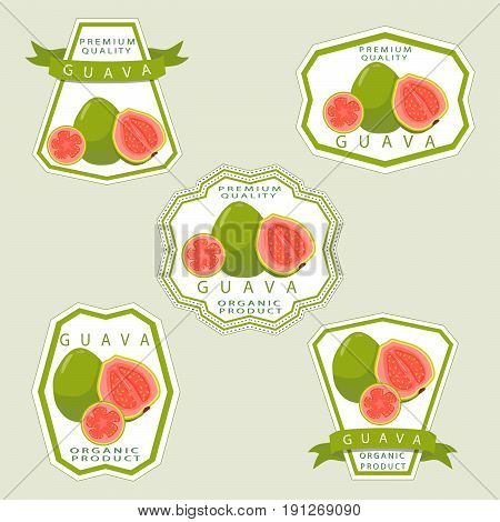 Vector illustration logo for whole ripe fruit red guava,cut half sliced close-up background. Guava drawing consisting of tag label,natural sweet food juice.Eat fresh raw organic exotic fruits guaves.