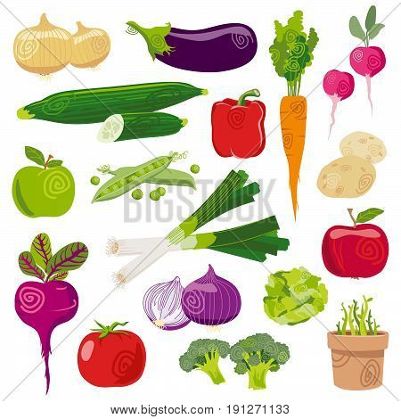 Garden vegetables fresh cartoon vector set isolated on white