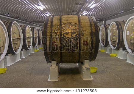 Aging Vide In Oak Barrels. Crimea.