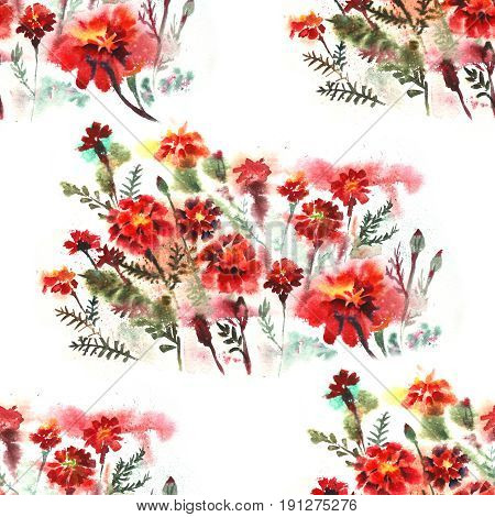 Beautiful Floral seamless pattern on white background with Marigold Flowers. Watercolor.