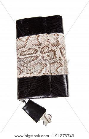 stylish modern riveted handbag for women on white background