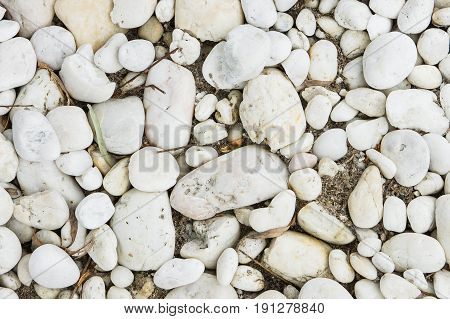 white rock stone on floor ,natural white rock stone
