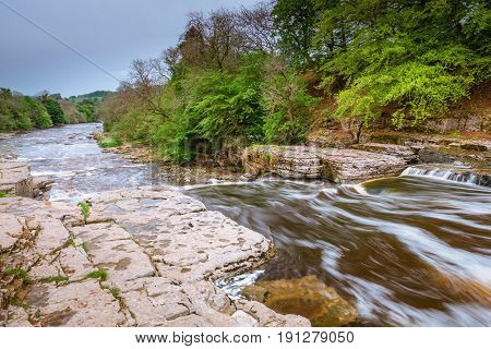 River Ure Flows over Aysgarth Lower Falls - Aysgarth Falls consist of three main falls lower middle and upper falls. They are spread over a mile of the River Ure in Wensleydale