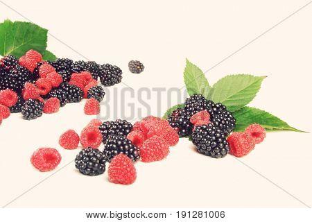 Berries on white backround - studio shot