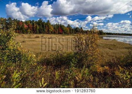 Wildlife Refuge Wetlands. Seney National Wildlife Refuge wetlands panorama in autumn. Located in Michigan's Upper Peninsula the refuge contains over 95000 acres