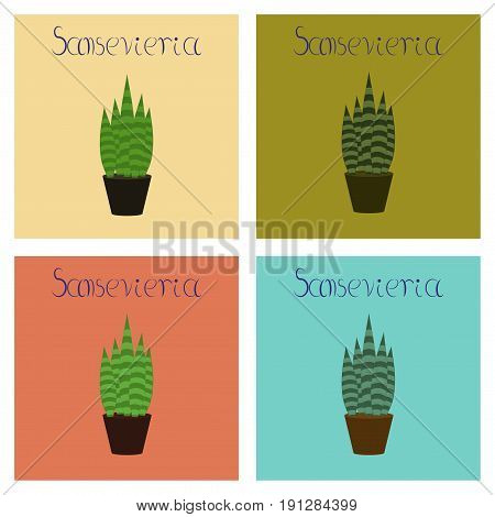 assembly of flat Illustrations nature plant Sansevieria