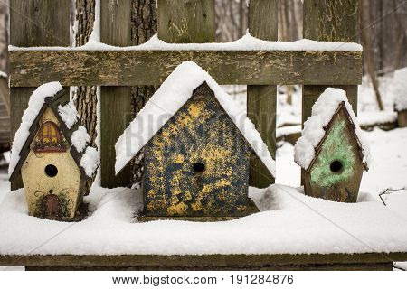 Winter Bird Houses. Row of colorful birdhouses covered in fresh fallen snow on a rustic wooden bench.