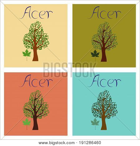 assembly of flat Illustrations nature plant Acer