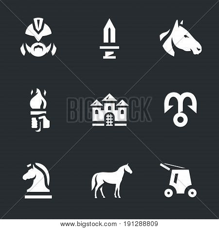 Warrior, sword, horse, torch, castle, hook, chess horse, stallion, siege equipment.