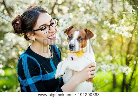 Girl walking with a hunting dog - the Jack Russell Terrier . Close-up. Spring. Copy space.