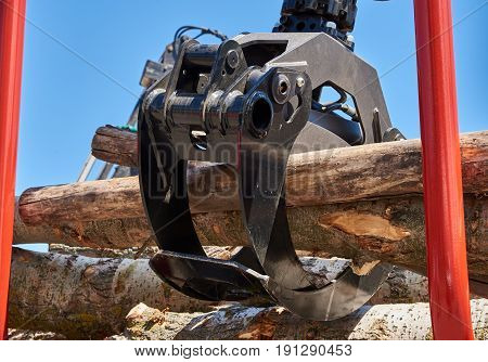 Gripper for logs on a forklift in natural light