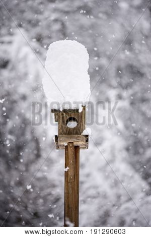 Wooden bird feeder with a tall cap of snow standing in a winter garden with snow-covered trees and falling snowflakes.