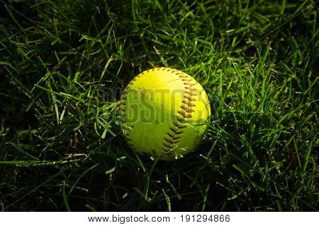 Yellow Baseball On A Green Grass On The Field
