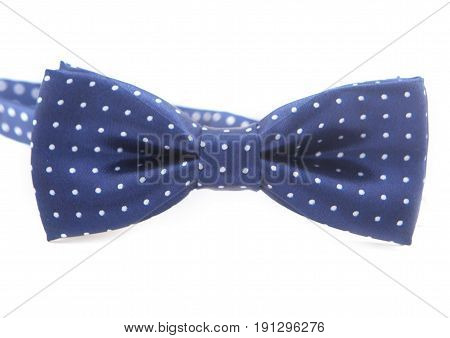 mens dark blue bow-tie with white peas isolated on a white background.