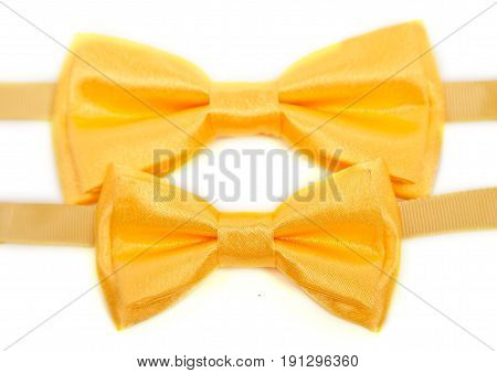 Yellow two bow tie isolated on white background.