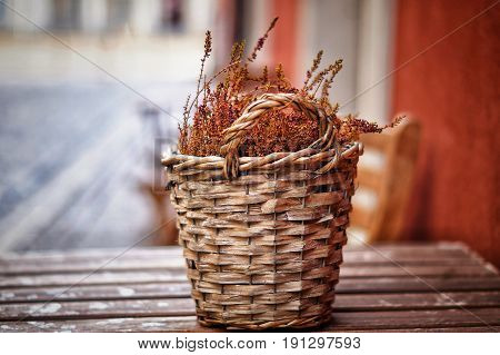 No People, Dry, Agriculture, Wicker, Cultures, Rural Scene,