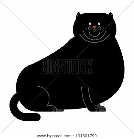 Fat Black Cat Isolated. Big Thick Pet Home