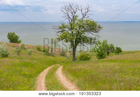 Spring landscape with an earth road down to Kakhovka Reservoir located on the Dnepr River Ukraine