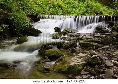 Fast mountain river flowing in forest among mossy stones