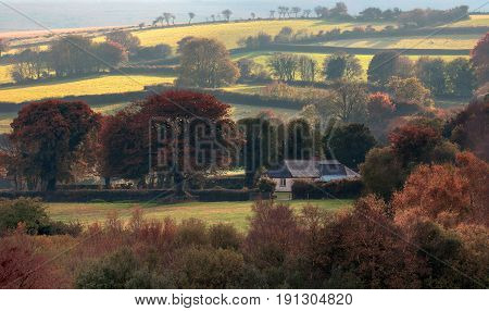 A lonely cottage in the hills of Dartmoor National Park. Autumn evening. The sun is shining. Light haze. Many trees already have red and yellow foliage. Devonshire. England