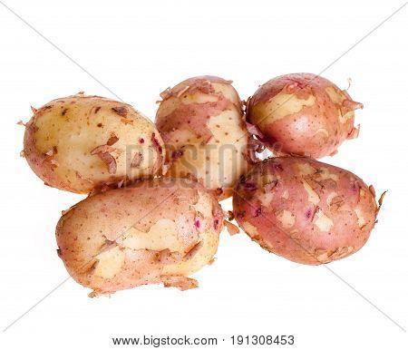 Raw new Potato isolated on white background