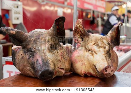 Two pig heads on the counter in the market. The meat Department in the store.