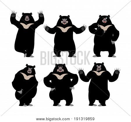 Himalayan Bear Set Emotion And Posture. Cheerful And Angry Wild Animal Emoji. Sad Black Big Beast. Y