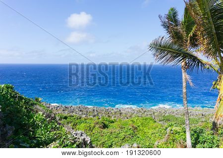 Natural color layering of green vegetation grey rugged and jagged coastal feature of coral along Togo Chasm coast with turquoise Pacific Ocean and blue sky beyond in Niue