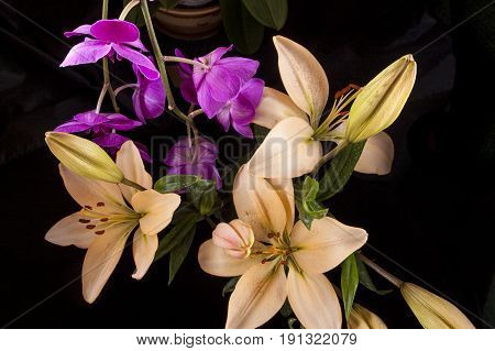 A low key image looking down at lilies and orchids.
