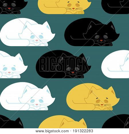 Sleeping Cat Pattern. Kitten Be Asleep Seamless Texture. Sleep Pet Background
