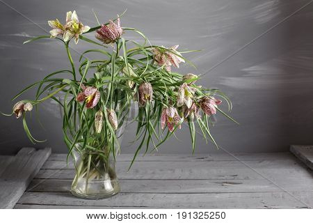 Fritillaria in vase on the worn wooden surface. place for text. copy space