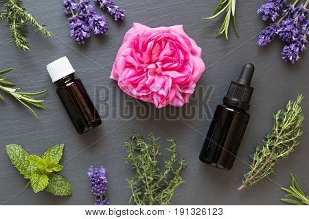 Two Bottles Of Essential Oil With Herbs On A Dark Background