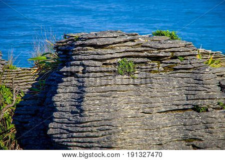 Detail of Pancake rocks in Punakaiki, South island, in New Zealand.