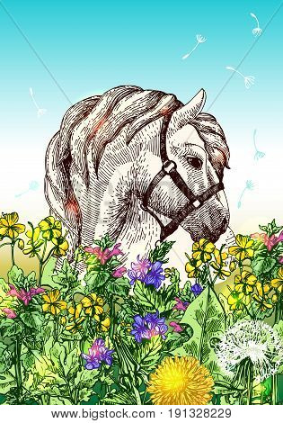 Vector fashion boho chick style horse with flowers. Hand drawn beautiful illustration.