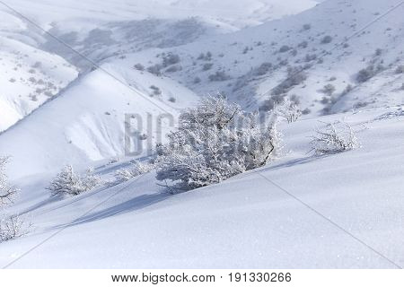 snowy mountains of Tien Shan mountains in winter