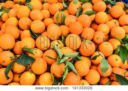 Local products fresh oranges on a organic market in Fethiye Turkey