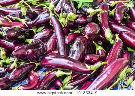 Fresh eggplant or aubergine in Fethiye Turkey market