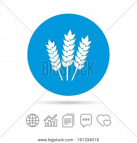 Agricultural sign icon. Gluten free or No gluten symbol. Copy files, chat speech bubble and chart web icons. Vector