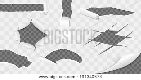 Torn paper collection. Realistic Vector illustration set