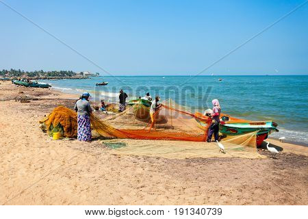 Fishing Boats In Negombo