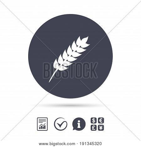 Gluten free sign icon. No gluten symbol. Report document, information and check tick icons. Currency exchange. Vector