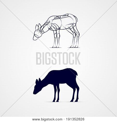 Young Deer Silhouette with Sketch Template on Gray Background. Grazing