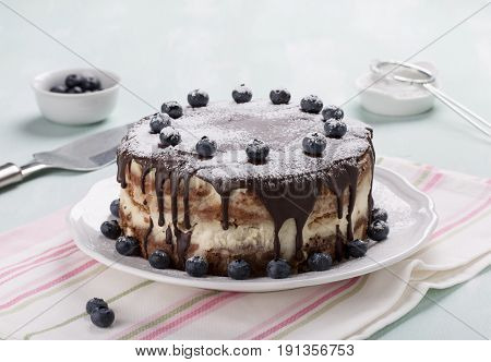 Homemade layered cake with chocolate icing decorated with blueberries