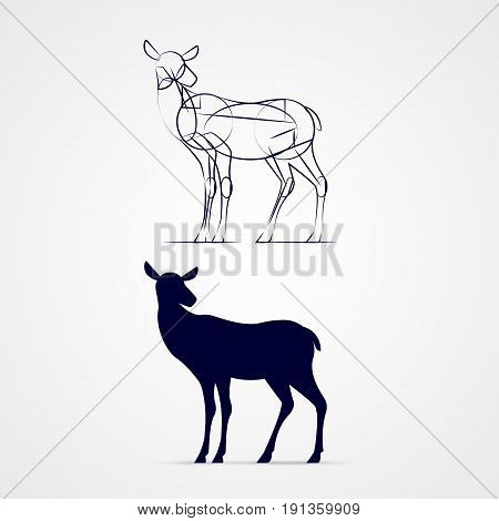 Illustration of Standing Young Deer Silhouette with Sketch Template on Gray Background