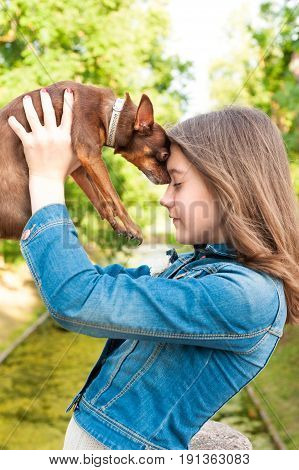 Unconditional love. Teenage girl with brown toy-terrier dog. Multicolored summertime outdoors image.