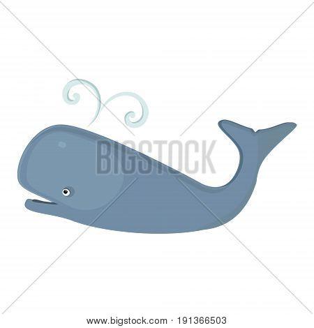 Marine Mammal Whale